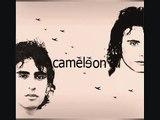Cameleon Wallah