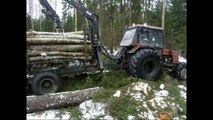 Belarus Mtz 1025 in forest