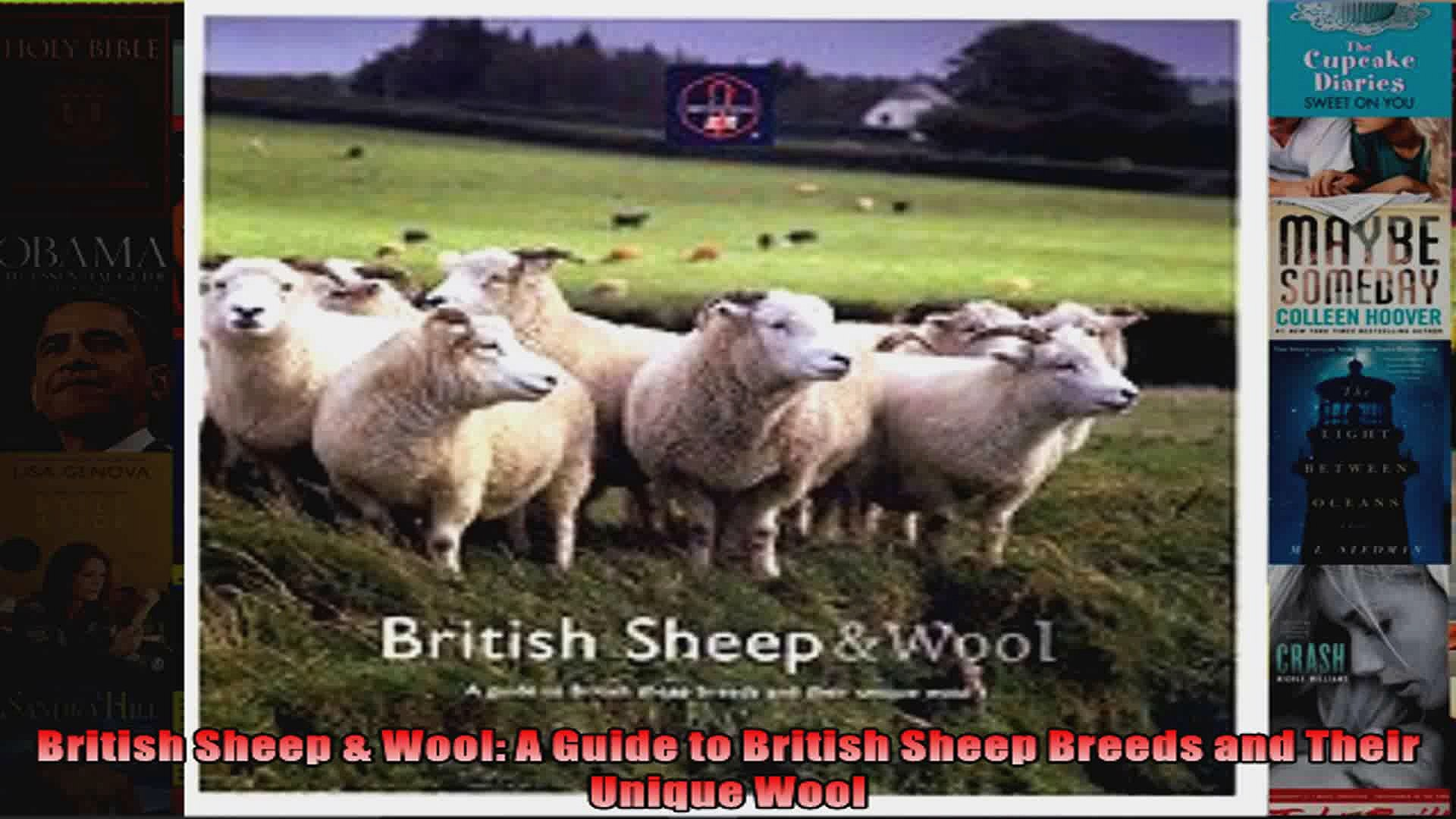 British Sheep Wool A Guide to British Sheep Breeds and Their Unique Wool