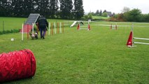 Ivy - Pass Agility - 01/05/2015 - Jumping