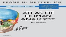Download Atlas of Human Anatomy  Netter Basic Science