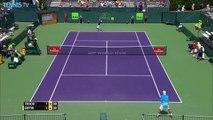 Tennis : Le coup dingue non-valable du tennisman Viktor Troicki contre Goffin !