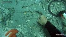 Un plongeur trouve 1 million de dollars en pièce d'or sous l'eau