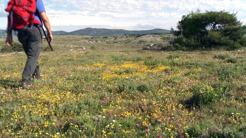 Une envie de territoire - Regards sur le Conseil de développement du PNR des Préalpes d'Azur
