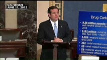 GOP Debate: Megyn Kelly challenges Ted Cruz on his past immigration statements.
