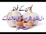 garlic the health benefits of garlic