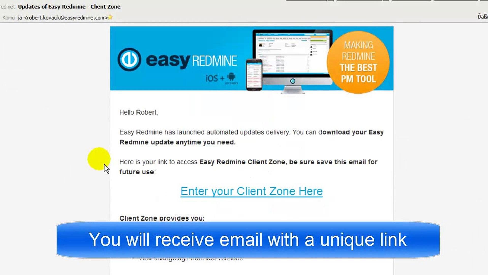Easy Redmine extending services - Client Zone