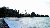 Les Tipaniers - Moorea - Polynésie Française