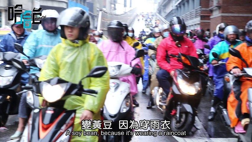 歡樂青紅燈,整個台北橋的機車瀑布都笑了