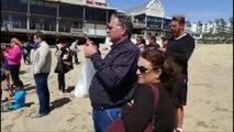 Una ballena gris del Pacífico montó un espectáculo en Redondo Beach en el sur de California.