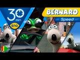 Bernard Bear | Bernard and the speed | 30 minutes
