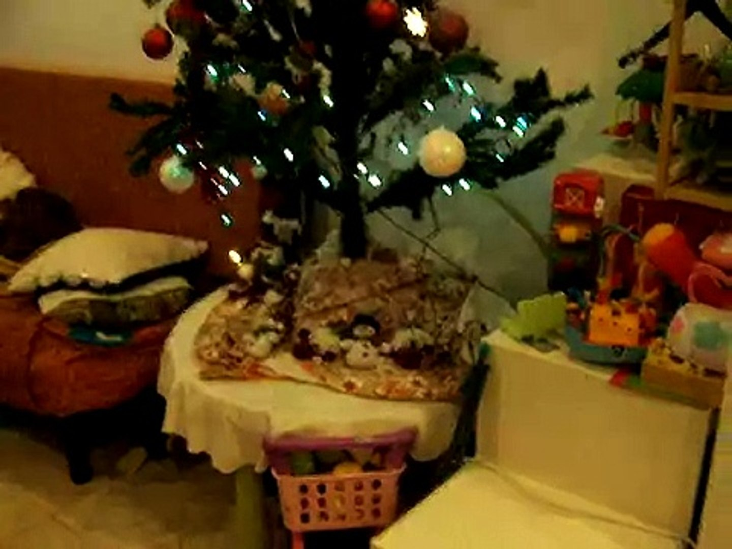 Sapin Video