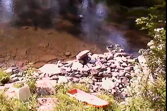 farming watercress