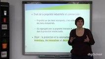 Les droits de propriété industrielle - Droit - digiSchool