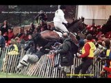 """HORSE GOES """"CROWD SURFING"""" AT A RACECOURSE!! OUCH!!"""