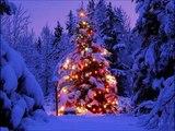 31a Dicembre 2011   Capodanno sulla neve
