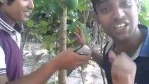 fanny video Bangladeshi from D.m. Shohel Cherry