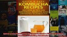 Read  Quick  Easy Kombucha Recipes Recipes  Tips on Brewing Benefits  Drinking Kombucha  Full EBook