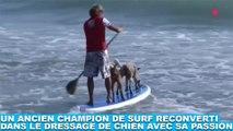 Un ancien champion de surf reconverti dans le dressage de chien avec sa passion ! Découvrez-le dans la minute chien #179