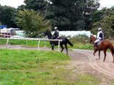 Surf Trotting up Gallop