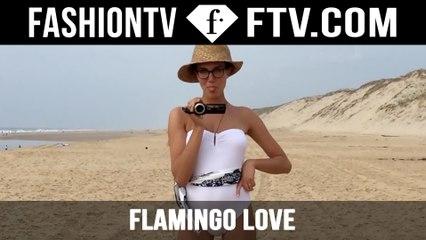 Hermes Presents Flamingo Love | FTV.com