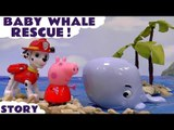 BABY WHALE RESCUE --- Join Marshall from Paw Patrol with Peppa Pig as they use the Paw Patroller and Play Doh blankets to rescue a Baby Whale, Featuring Thomas and Friends, George, Chase, Zouma, Rubble, Rhyder and many more family fun toys