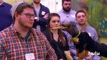 Triumph the Insult Comic Dog at the Democratic Debate • Triumph on Hulu