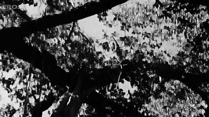 Uran Khatole Pe Ud Jaoon (Video Song)   Anmol Gadi   Shamshad Begum
