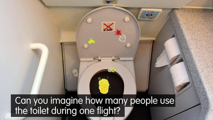 What are plane toilets really like?