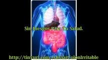 Sindrome Del Intestino Irritable Tratamiento
