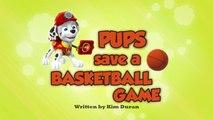 Щенки спасают баскетбольный матч || Pups Save a Basketball Game