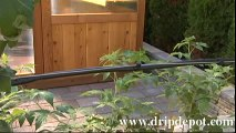 """How to install 1/2"""" drip line in a Drip Irrigation System"""