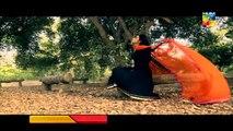 Pakistani Drama Bhool OST Title Songs | HUM TV Drama Songs