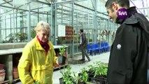Cherbourg en Cotentin : des plantes aux habitants [TéVi] 16_04_07