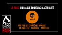 « Gare à la rage » : voyageurs, ne ramenez pas la rage dans vos bagages