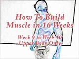 Build Muscle - Build Muscle in 16 Weeks (week 5 upper)  Do this, Build Muscle