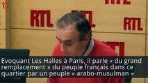 Zemmour et «un peuple arabo-musulman substitué» au peuple français