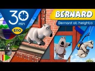 Bernard Bear | Bernard at heights (Special Collection 02) | 30 minutes