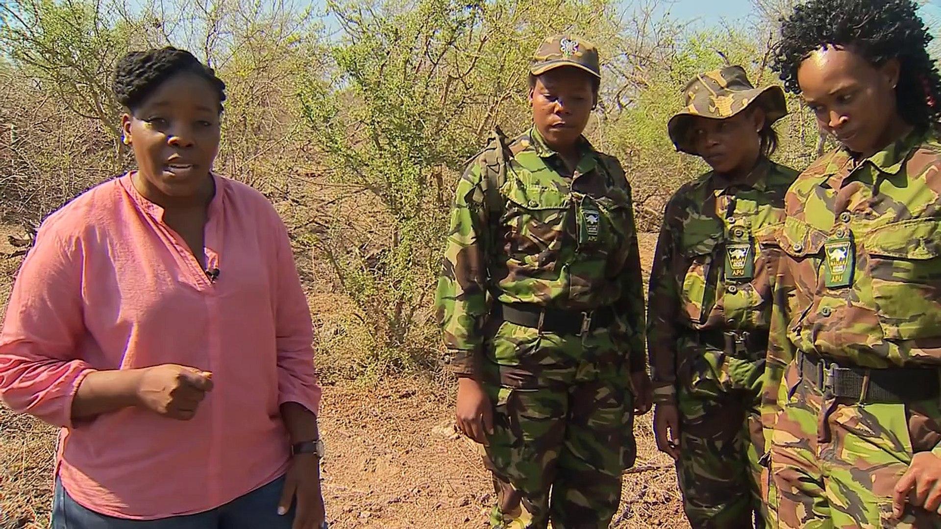 Extinction warning for Africas rhinos - BBC News