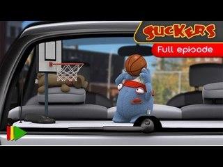 Suckers - 79 - Basket