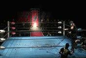 Daichi Hashimoto vs. Hideyoshi Kamitani (3/10/16)
