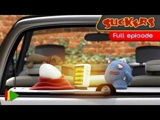Suckers - 48 - Eggs
