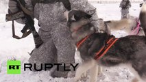 What is more awesome than husky dogs? Huskies training with Russias Northern fleet!