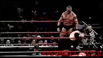 WWE WRESTLING - BROCK LESNAR AND THE UNDERTAKER VS. RIC FLAIR AND RVD (2002) - WWE Wrestling - Sports MMA Mixed Martial Arts Entertainment
