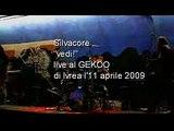 """Silvacore """"vedi!"""" live al Gekoo di Ivrea l'11/04/2009"""
