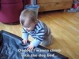 Le bébé tente de faire dodo dans le lit du chien, mais regardez bien la réaction du toutou!