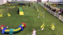 Super G runs in Finnish Agility Competition 2016