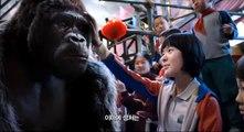 Korean Movie 미스터 고 (Mr Go, 2013) 예고편 (Trailer)