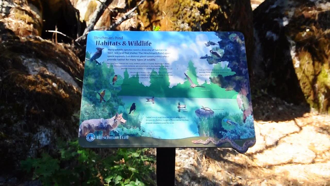 Hirschman's Pond trail sign, pond