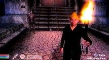 The Elder Scrolls IV Oblivion[Lvl Sneak Glitch]